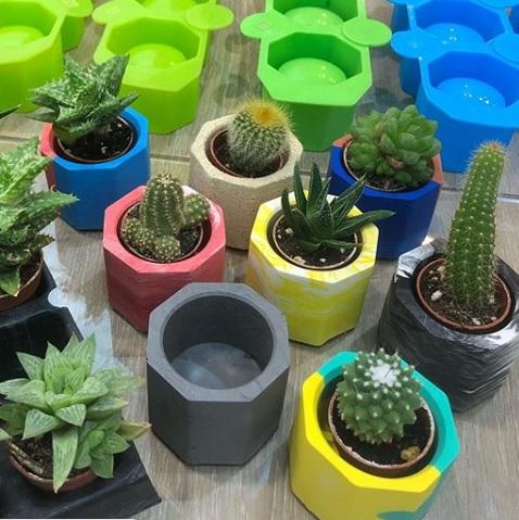 Crea tus propios minicactus pots con Jesmonite